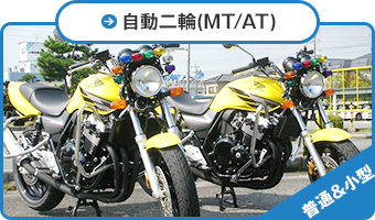普通自動二輪(MT/AT)